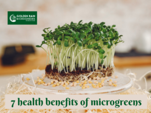 7 health benefits of microgreens