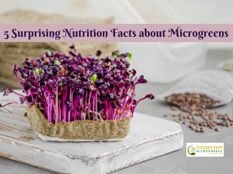 5 Surprising Nutrition Facts about Microgreens