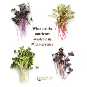What are the nutrients available in micro greens?
