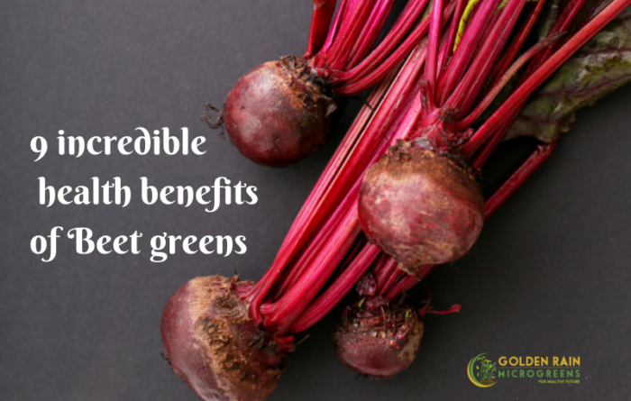 10 incredible health benefits of Beet greens