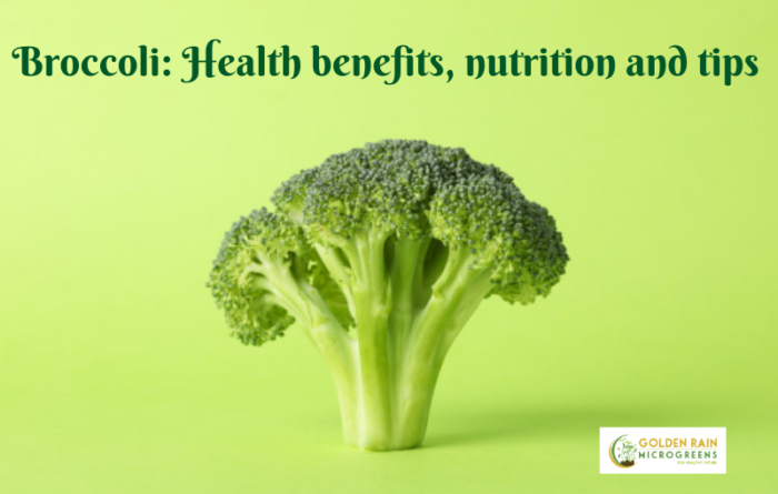 Broccoli: Health benefits, nutrition and tips